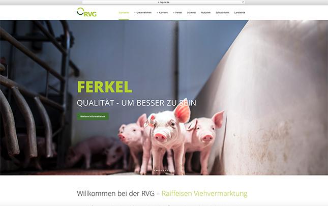 RVG Screenshot der neuen Webseite die durch die Werbeagentur Medien Formen Werte aus Münster erstellt wurde