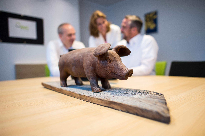 Schweinskultur bei einem Werbefotoshooting für die RVG, durch geführt von der Werbeagentur Medien Formen Werte aus Münster